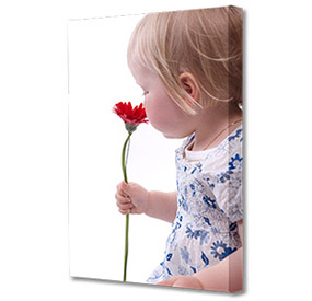 Medium Portrait Mounted Canvas Print